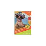 Carta Fotografica Glossy Paper A4 50 Fogli - 150 g/m²